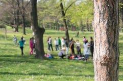 Niños que juegan en el parque Foto de archivo libre de regalías