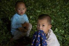 Niños que juegan en el pueblo en las hojas de té Fotos de archivo