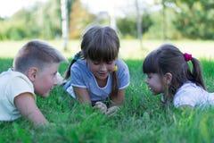 Niños que juegan en la hierba imagen de archivo