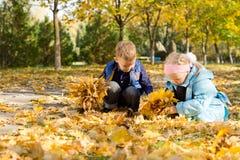 Niños que juegan en una alfombra de las hojas de otoño Imágenes de archivo libres de regalías