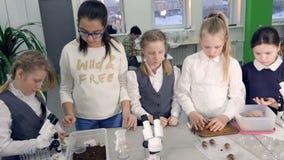Niños que preparan los materiales para el experimento de la ciencia 4K metrajes