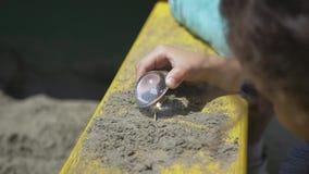 Niños que queman el de madera por la lupa en luz del sol, rayo de sol o sol almacen de video