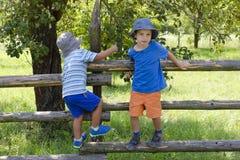 Niños que suben la cerca del jardín Imagenes de archivo