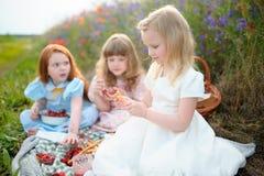 Niños que tienen comida campestre al aire libre Jugar a niños en el día de verano Fotografía de archivo libre de regalías