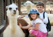 Niños y animales en el parque zoológico Imagenes de archivo