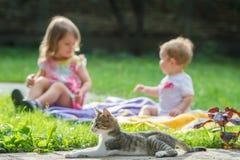 Niños y gato Fotografía de archivo