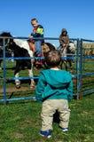 Niños y potros en la granja Foto de archivo