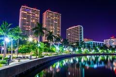 沿沿海运河的棕榈树和在ni的地平线 免版税图库摄影