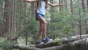 Ni?o en Forest Walking Tree Log Kid que juega la madera al aire libre de la muchacha de la aventura que acampa almacen de video