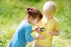 Ni?os que exploran la naturaleza con la lupa Cierre para arriba Niño pequeño y muchacha que miran con la lupa en manzanilla imagenes de archivo