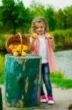 Niña con una cesta de manzanas Fotografía de archivo libre de regalías