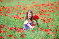 Niña hermosa que escoge amapolas rojas Foto de archivo