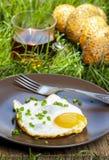 Śniadanie na trawie Obraz Royalty Free
