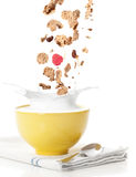 śniadaniowego zboża dolewanie Zdjęcie Stock