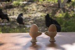 Śniadaniowy ustawianie w gospodarstwie rolnym Zdjęcie Royalty Free