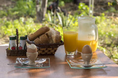 Śniadaniowy ustawianie w gospodarstwie rolnym Zdjęcie Stock