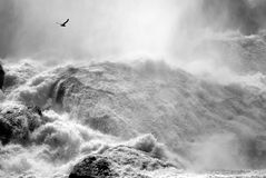 Niagara Falls. Royalty Free Stock Photography
