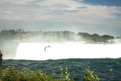 Niagara Falls Canada Immagine Stock Libera da Diritti