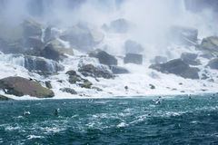 Niagara Falls Mist in New York, USA. Beautiful Niagara Falls Mist and Seagulls in New York, USA Stock Image