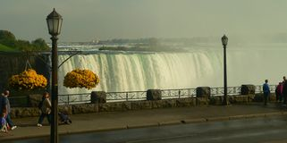 Niagara falls and road. Niagara falls, road and yellow flowers stock images