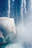Niagara fly-by. Two seagulls flying by the cascade of the Niagara falls after a snowstorm Royalty Free Stock Photos