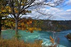 Niagara River. Fall color at Niagara River Royalty Free Stock Photography