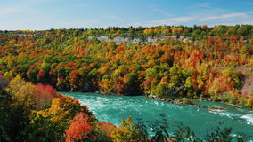Niagara River flödar längs den höga steniga kusten täckte dagen för nedgången för höstskogen sceniska Den populära turist- destin lager videofilmer