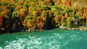 Niagara River flödar längs den höga steniga kusten täckte dagen för nedgången för höstskogen sceniska Kamerapannorna från floden  stock video