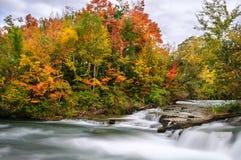Niagara River NY, USA Royaltyfria Foton