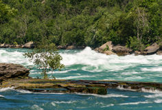 Niagara River at White Water Walk in Canada Royalty Free Stock Photos
