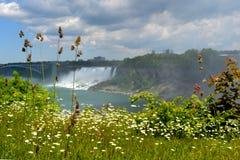Niagarawaterval en een brug Stock Fotografie