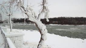 Niagra Fluss Stockfoto