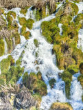 Niagra Springs in Idaho with green grass Stock Photo