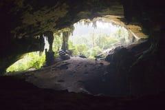 Niah cave Royalty Free Stock Photos
