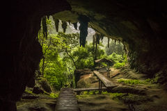 Niah nationalpark, Niah grotta i Sarawak Malaysia Fotografering för Bildbyråer