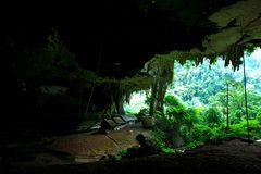 Niah park narodowy fotografia royalty free