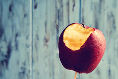 Nibbled apple Royalty Free Stock Images