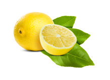 Nica shiny lemon. Royalty Free Stock Photo