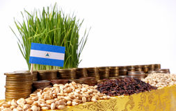 Nicaragua flag waving with stack of money coins and piles of wheat. And rice seeds stock photography