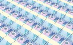 Nicaraguan cordoba bills stacks background. Stock Photography