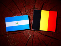 Nicaraguan flag with Belgian flag on a tree stump isolated. Nicaraguan flag with Belgian flag on a tree stump Royalty Free Stock Photo