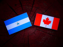 Nicaraguan flag with Canadian flag on a tree stump isolated. Nicaraguan flag with Canadian flag on a tree stump Stock Images