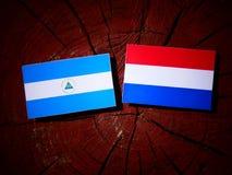 Nicaraguan flag with Dutch flag on a tree stump isolated. Nicaraguan flag with Dutch flag on a tree stump Royalty Free Stock Image
