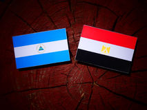 Nicaraguan flag with Egyptian flag on a tree stump isolated. Nicaraguan flag with Egyptian flag on a tree stump Stock Photo