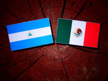 Nicaraguan flag with Mexican flag on a tree stump isolated. Nicaraguan flag with Mexican flag on a tree stump Royalty Free Stock Photos