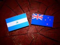 Nicaraguan flag with New Zealand flag on a tree stump isolated. Nicaraguan flag with New Zealand flag on a tree stump Stock Photo