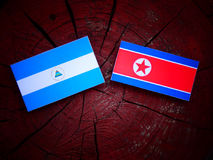 Nicaraguan flag with North Korean flag on a tree stump. Nicaraguan flag with North Korean flag on a tree stump Royalty Free Stock Photos