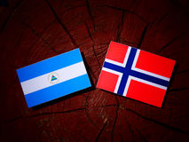 Nicaraguan flag with Norwegian flag on a tree stump isolated. Nicaraguan flag with Norwegian flag on a tree stump Stock Image