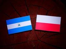 Nicaraguan flag with Polish flag on a tree stump isolated. Nicaraguan flag with Polish flag on a tree stump stock illustration