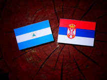 Nicaraguan flag with Serbian flag on a tree stump isolated. Nicaraguan flag with Serbian flag on a tree stump Royalty Free Stock Photography